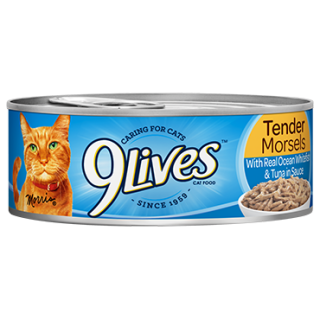 9 Lives Tender Morsels with Real Ocean Whitefish & Tuna in Sauce 156g Cat Wet Food