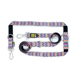 Max & Molly Vintage Pink Multi-Function Pet Leash