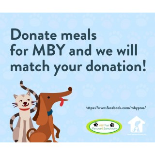 DONATE TO MBY DOGS & CATS