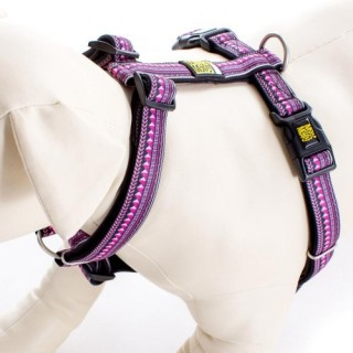 Max & Molly Ethnic Purple Pet Harness