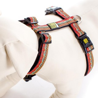 Max & Molly Ethnic Red Pet Harness