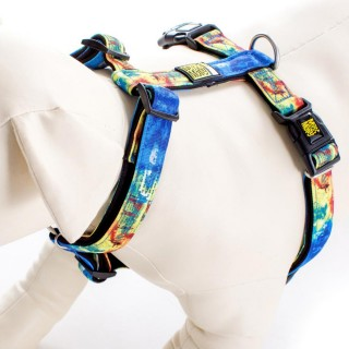 Max & Molly Rio Blue Pet Harness