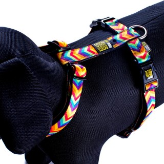 Max & Molly Summertime Pet Harness