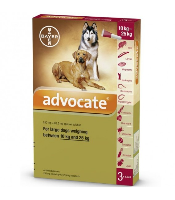 Advocate Flea Amp Tick Spot On For Large Dogs 10kg To 25kg